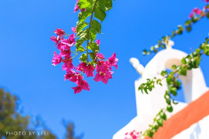 圣安东尼奥避暑酒店(San Antonio Summerland)图片