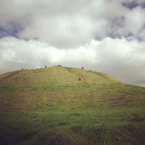 """""""...外也是奥克兰的自然最高点能俯..._伊甸山""""的评论图片"""