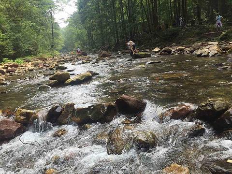 金鞭溪旅游景点攻略图