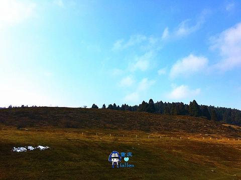 仙女山旅游景点攻略图