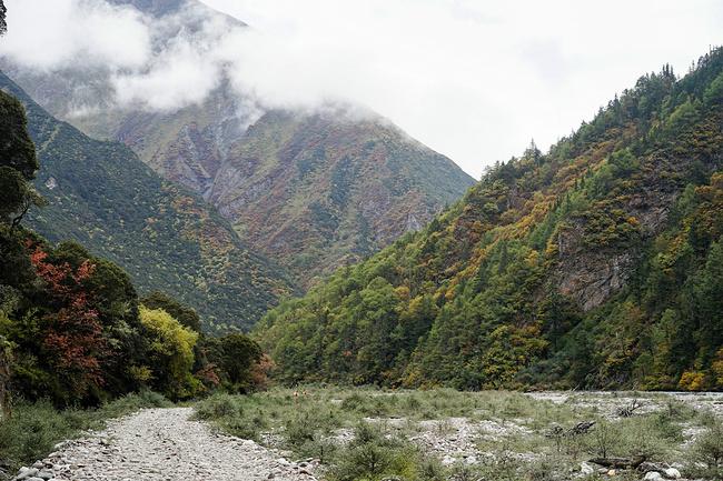 美丽的下子梅村图片