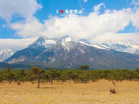 甘海子旅游景点图片