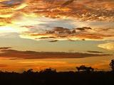 加蓬旅游景点攻略图片