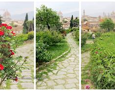 一个人,一场梦,一座城——佛罗伦萨
