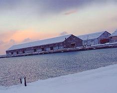 冬雪,美得不可方物的北海道