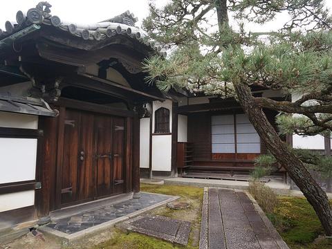 东福寺旅游景点图片