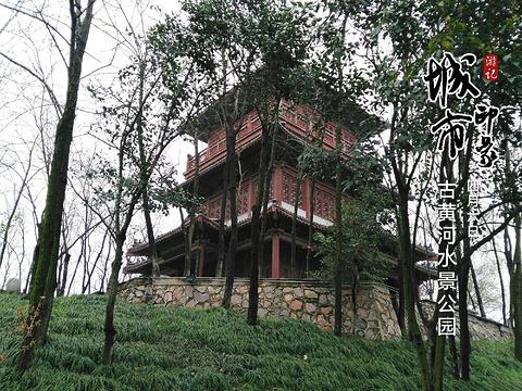 古黄河水景公园旅游景点图片