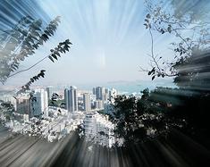 繁华背后的宁静美景——去深圳走走