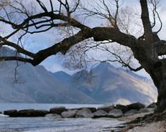 远离繁华喧闹的世界——新西兰