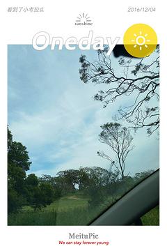 奥特威角灯塔旅游景点攻略图