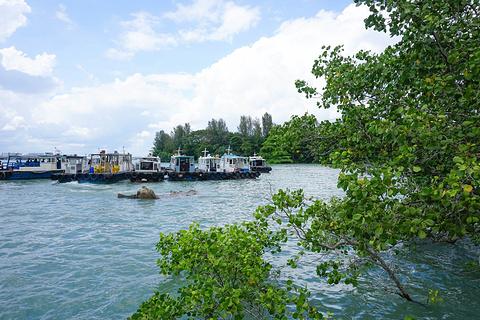 乌敏岛旅游图片