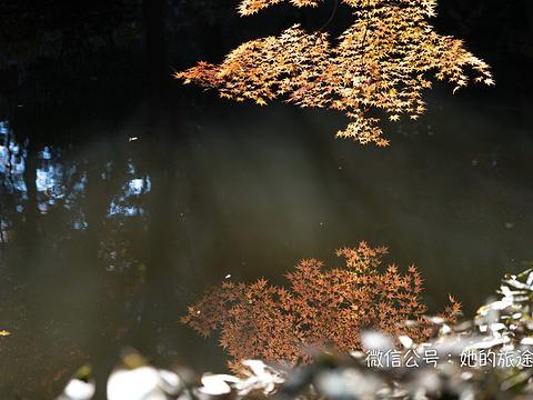 六义园旅游景点图片