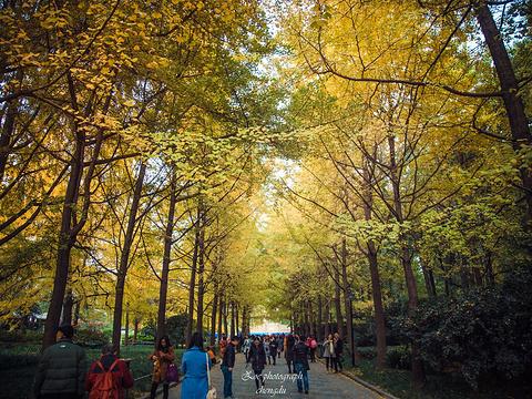 人民公园旅游景点图片