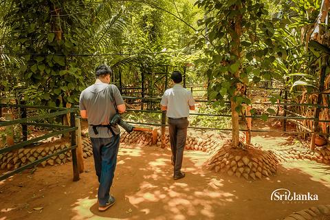 马特莱香料园旅游景点攻略图