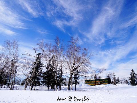 羊草山旅游景点图片