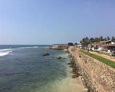 斯里兰卡的一场旅行