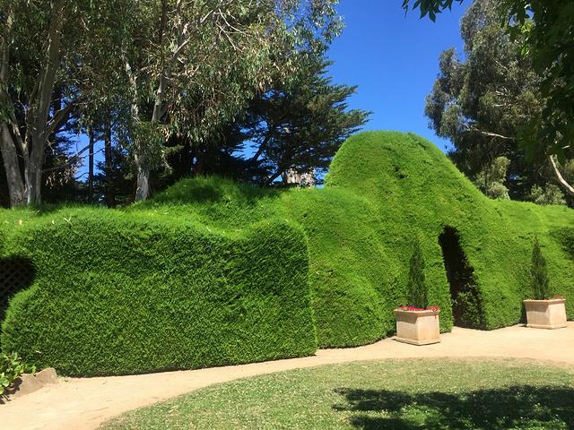 2017雅思迷宫和薰衣草花园 一个超级小的花园... 雅思迷宫和薰衣草花...图片 126090 640x480