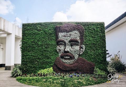 鲁迅公园的图片