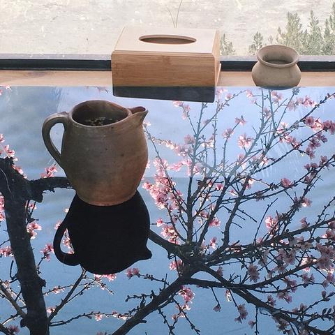 """""""中午是在锅里花园餐厅吃饭,餐厅外面带着一个小花园特别美,内部装修一般般。真的是锅里花园_百岁坊锅里花园餐厅""""的评论图片"""