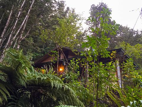 蒂阿瑙萤火虫岩洞旅游景点图片