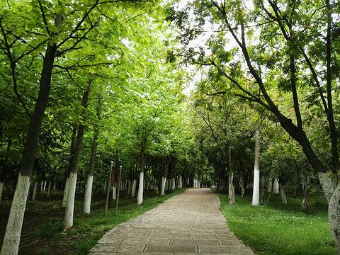 聂耳公园旅游景点图片