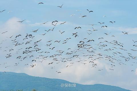 澜沧江风光旅游景点攻略图