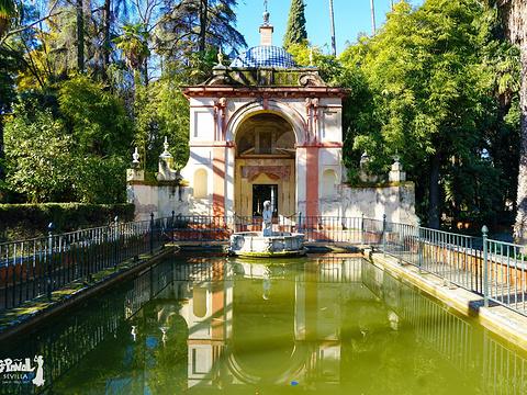 塞维利亚王宫旅游景点图片