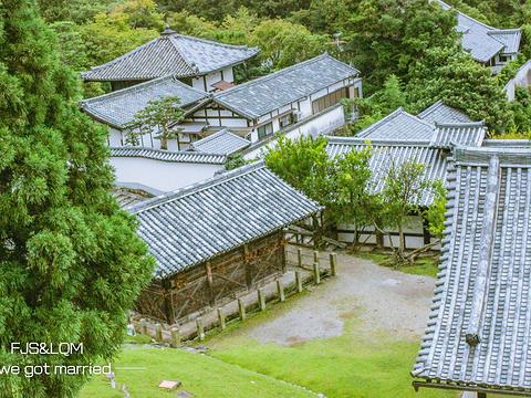 东大寺旅游景点图片