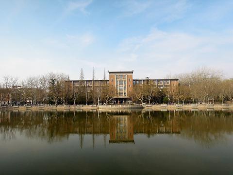 南开大学的图片