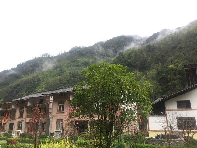 山村晨雾图片