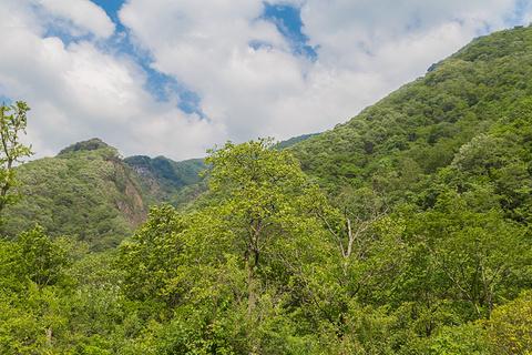 唐家河自然保护区