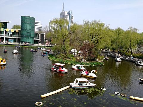 泉城公园旅游景点图片