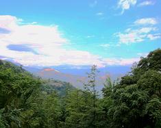 鬼斧神工的地溶奇观——米易龙潭溶洞风景区游记