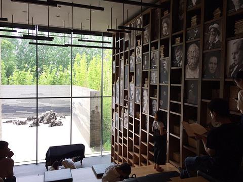 木心美术馆旅游景点图片