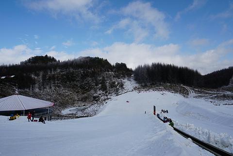 神农架国际滑雪场的图片
