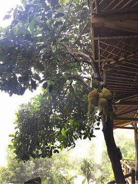 槟榔谷旅游景点攻略图