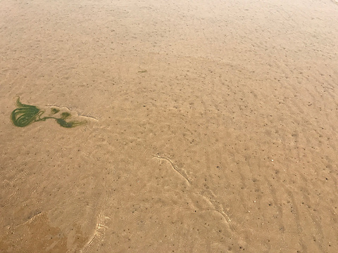 浅水湾旅游景点攻略图