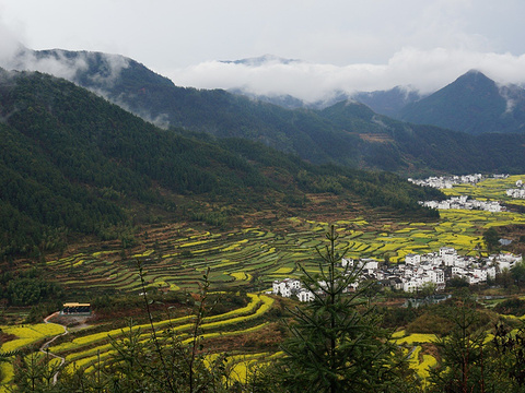 江岭景区旅游景点图片