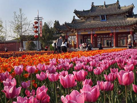 天波杨府旅游景点图片