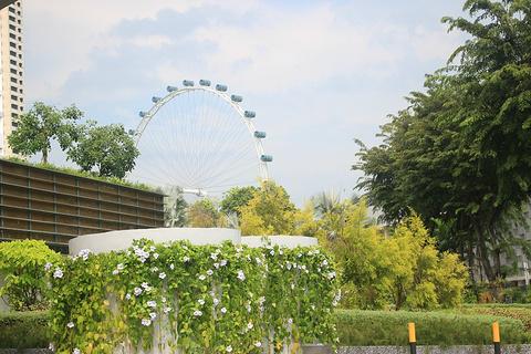新加坡摩天观景轮旅游景点攻略图