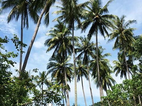 孕妇岛旅游景点图片