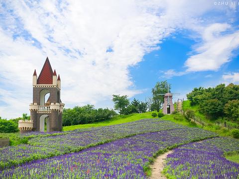 碧云花园旅游景点图片