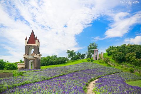 碧云花园的图片