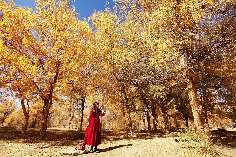 CORAIN & OSKAR --行走,不一样的四季(甘肃,内蒙行)