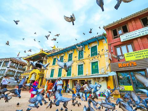 博纳佛塔旅游景点图片