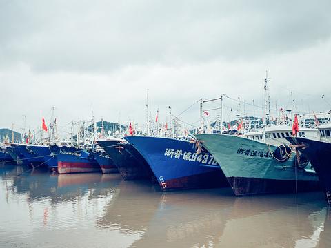 沈家门渔港旅游景点图片