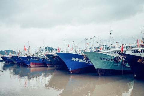 沈家门渔港旅游景点攻略图
