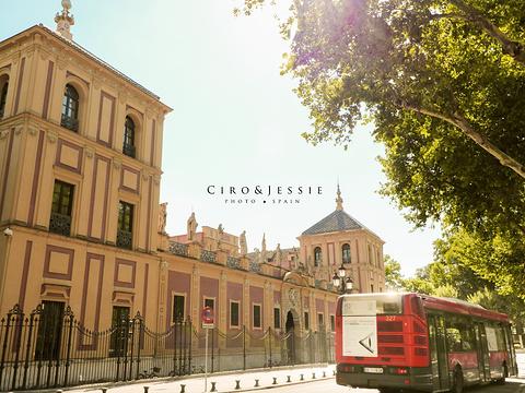 塞维利亚大学旅游景点图片