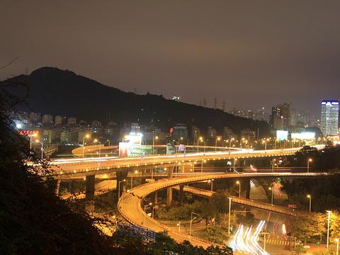 海沧大桥旅游景点图片