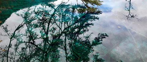 五花海旅游景点攻略图